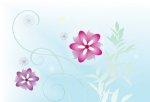 photo wallpaper - flowers